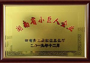 "<div style=""text-align:center;""> 湖南省小巨人企業 </div>"